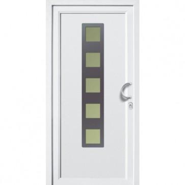 DV-432 Kunststoff Haustür